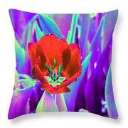 Spring Tulips - Photopower 3146 Throw Pillow