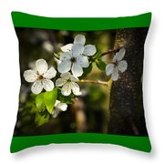 Spring Twig With White Florets Throw Pillow
