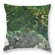 Spring Water At The Grotto Throw Pillow