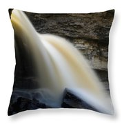 Spring Waterfall Throw Pillow