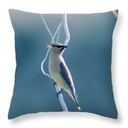 Spring Wax Wings  Throw Pillow