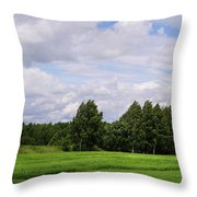 Spring Windy Day On Green Field Throw Pillow