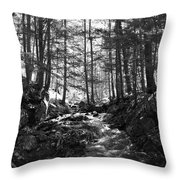 Spring Wood Throw Pillow