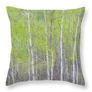 Spring Woods Throw Pillow