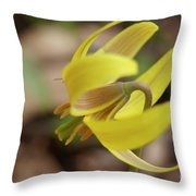 Spring Yellow Flower Throw Pillow