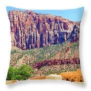 Springdale View Throw Pillow