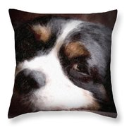 Springer Spaniel Throw Pillow by Tom Mc Nemar