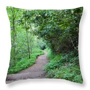 Springing Down The Path Throw Pillow