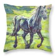 Springloaded Throw Pillow