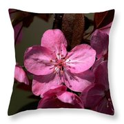 Springs Bloom Throw Pillow