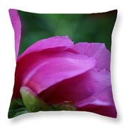 Spring's Bluster Throw Pillow