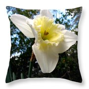 Spring's First Daffodil 3 Throw Pillow