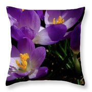 Springs First Flowers Throw Pillow