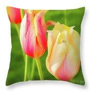 Spring's Garden Throw Pillow