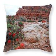 Springtime At Arches National Park Throw Pillow