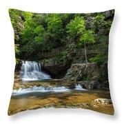 Springtime At Saint Mary's Falls Virginia Throw Pillow