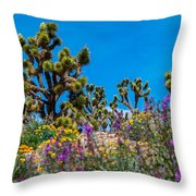 Springtime At The Canyon Throw Pillow