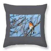 Springtime Blue Throw Pillow