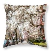 Springtime Boston Back Bay Throw Pillow