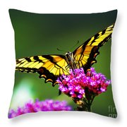 Springtime Butterfly Throw Pillow