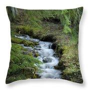 Springtime Creek Throw Pillow