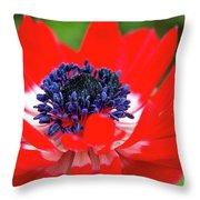 Springtime - Flowers Throw Pillow