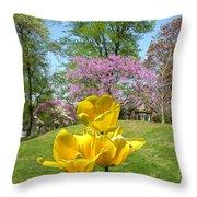 Springtime In Bridgeton Missouri Throw Pillow