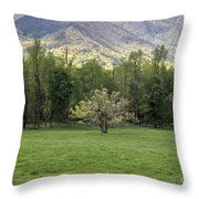 Springtime In Cades Cove Great Smoky Mountains National Park Throw Pillow