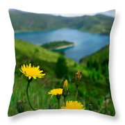 Springtime In Fogo Crater Throw Pillow