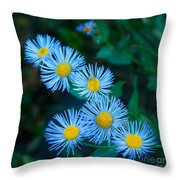 Springtime In Grand Teton Throw Pillow