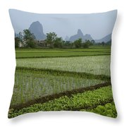 Springtime In Guangxi Throw Pillow