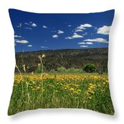 Springtime In Hat Creek Throw Pillow