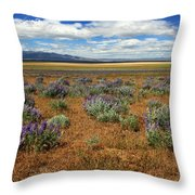 Springtime In Honey Lake Valley Throw Pillow by James Eddy