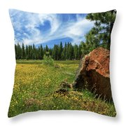 Springtime In Lassen County Throw Pillow