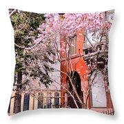 Springtime In Lincoln Park Throw Pillow