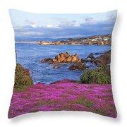 Springtime In Pacific Grove Throw Pillow