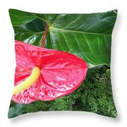 Springtime In Spokane Throw Pillow