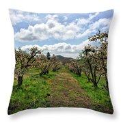 Springtime In The Apple Grove Throw Pillow