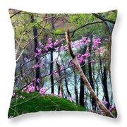 Springtime In The Mountains 2 Throw Pillow