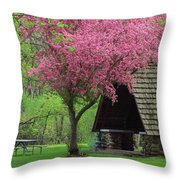 Springtime In The Park Throw Pillow by Lori Frisch
