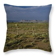 Springtime In The Western Cape Throw Pillow