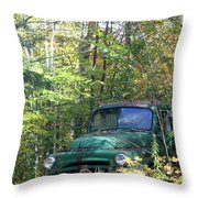 Springtime In The Woods Of Maine Throw Pillow
