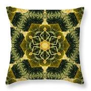 Springtime  Mandala Throw Pillow