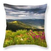 Springtime Mountain Throw Pillow