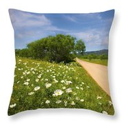 Springtime On The Loop Throw Pillow