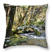 Springtime Stream In The Smokies Throw Pillow