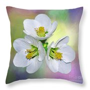 Springtime Triplets By Kaye Menner Throw Pillow