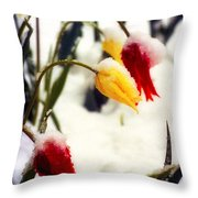 Springtime Tulips In The Snow Poster Print Throw Pillow