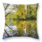 Springtime Yellows And Blues Throw Pillow