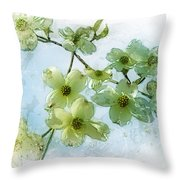 Sprintime In Our Back Yard Throw Pillow